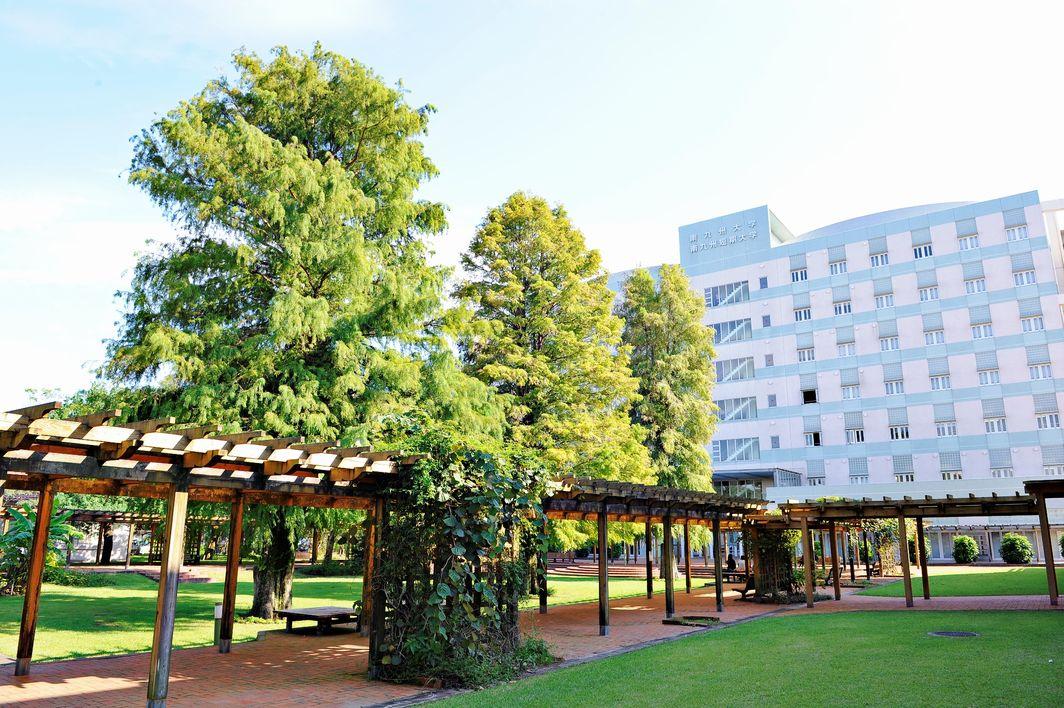 九州 大学 南 南九州短期大学
