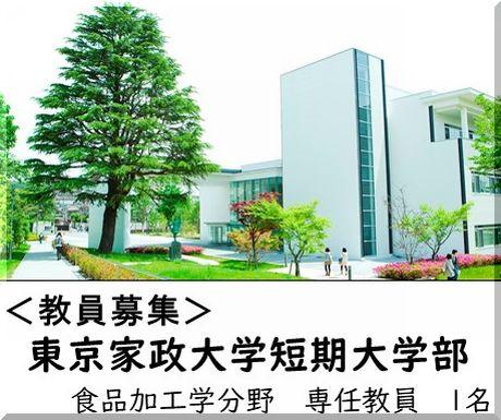 <教員募集>東京家政大学短期大学部 専任教員を募集しています